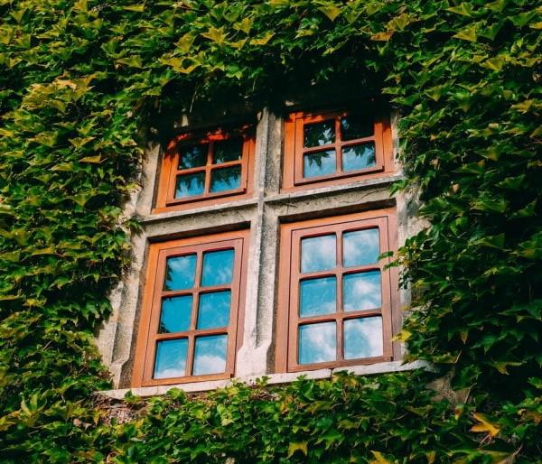 Ξύλινα παράθυρα με αντανάκλαση του ουρανού